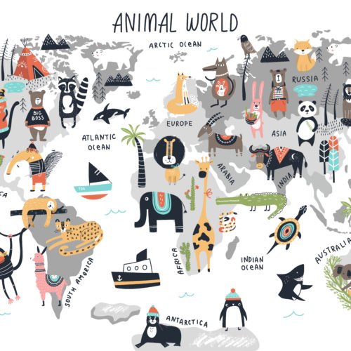 Dieren Wereldkaart 2