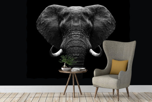 Black elephant 2