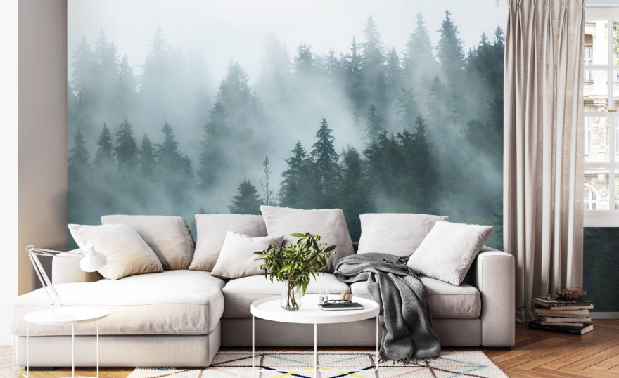 Misty landscape 3