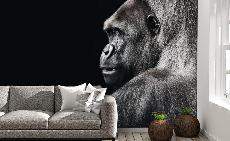 Silver gorilla